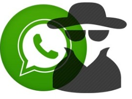 How to see Last Seen on WhatsApp even if Hidden