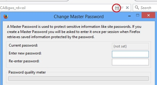 make firefox browser password protected