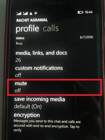 Mute individual chat in Windows