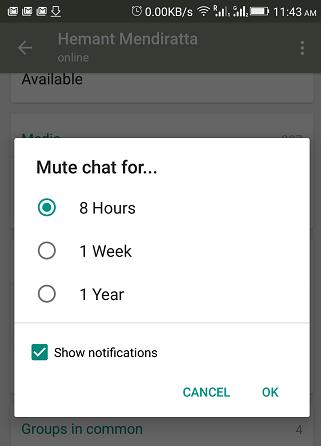 mute individual chat in WhatsApp - mute chat