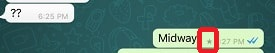 Starred Messages in WhatsApp