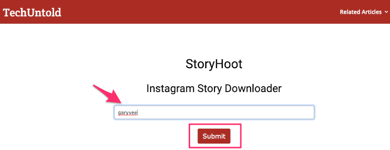 StoryHoot Instagram Story Downloader