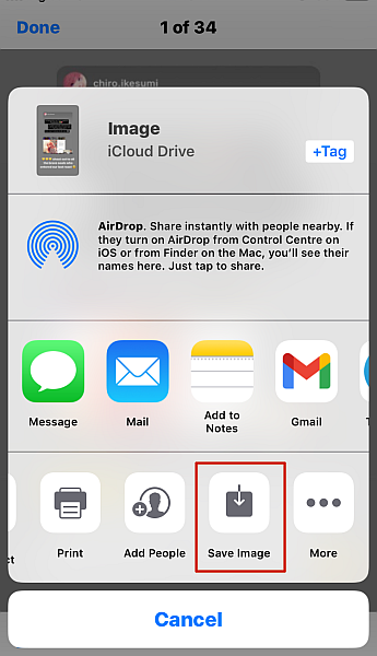 Iphone Share image options with Save image option highlighted