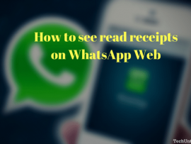 How to see read receipts on WhatsApp Web