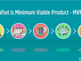 Everything You Need to Know About Minimum Viable Product(MVP)