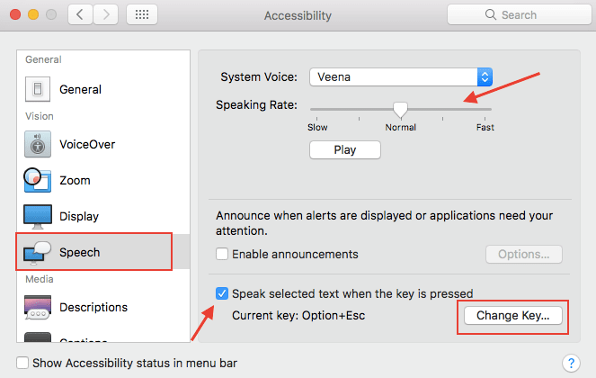 Text to Speech on MacBook