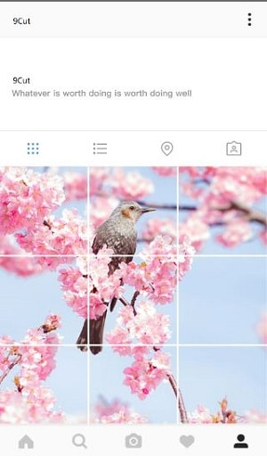how to tile photos in instagram - 9 CUT