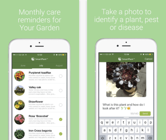 Flower identification app - SmartPlant