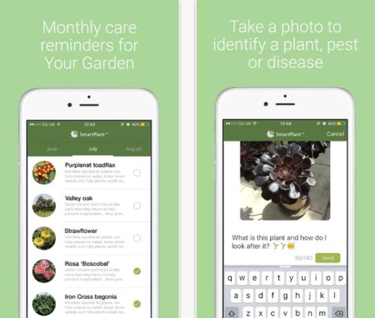 Flower identification app - SmartPlant