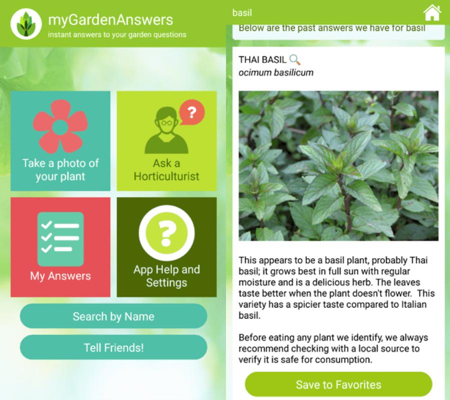 Plant Identification apps - GardenAnswers