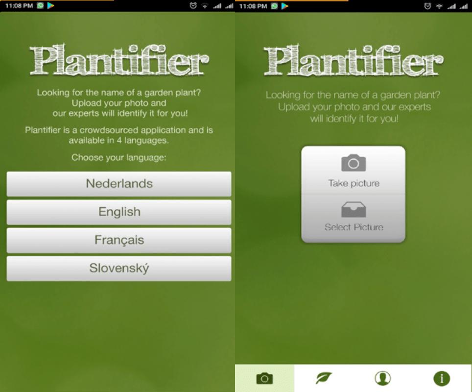 Plantifier app to identify plants