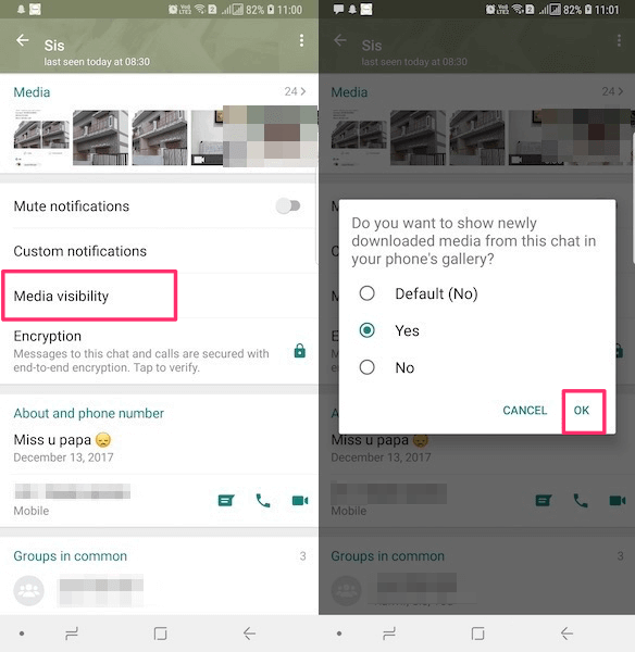 Media Visibility for individual chats