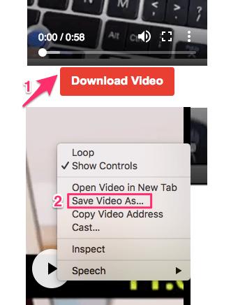 dOWNLOAD IGTV videos for offline viewing