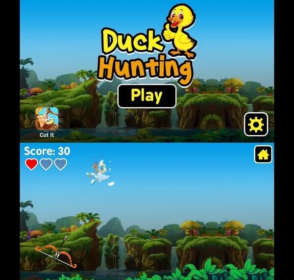 duck hunting -archery shooting