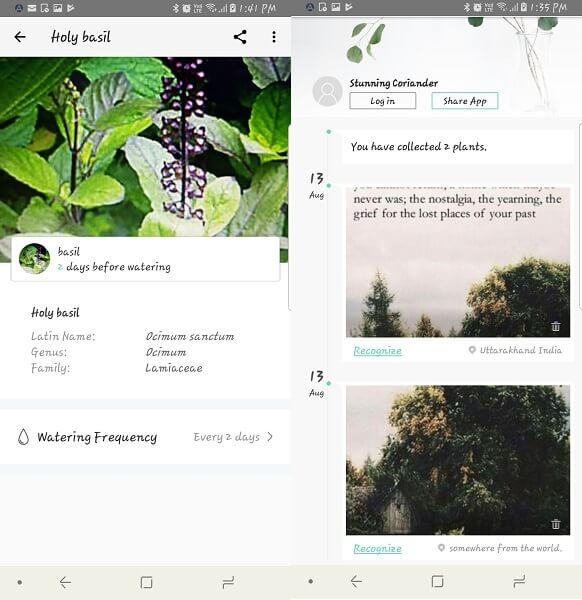 picturethis - identify plants while on hike