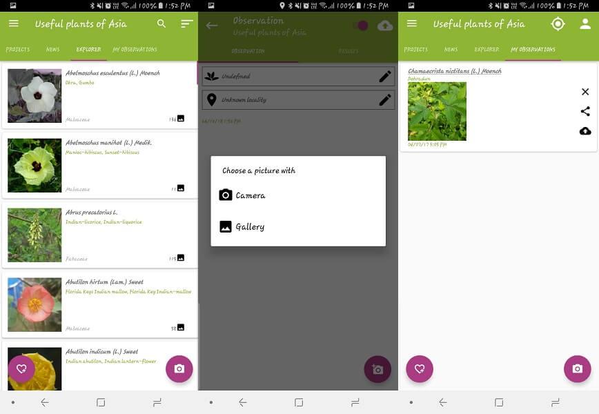 PlantNet - wildflower id app