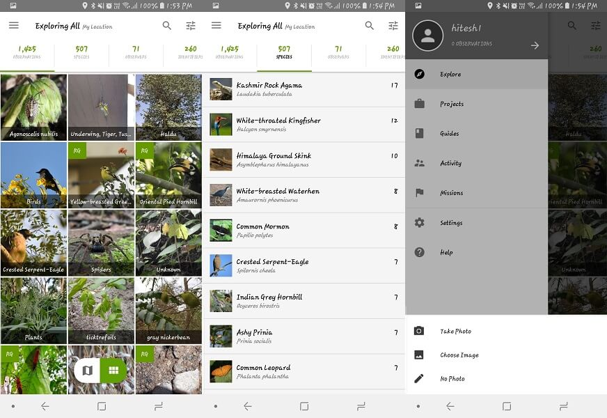 iNaturalist - nature identification app