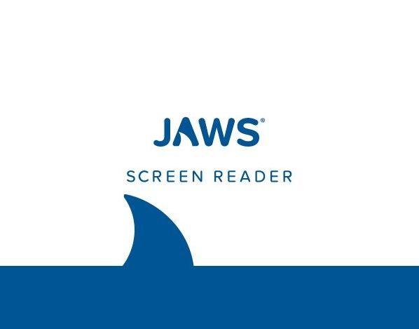 Jaws screen reader