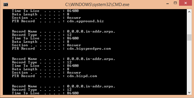 view DNS cache