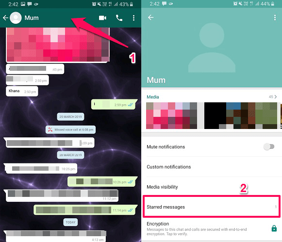 see starred message of particular contacts in WhatsApp