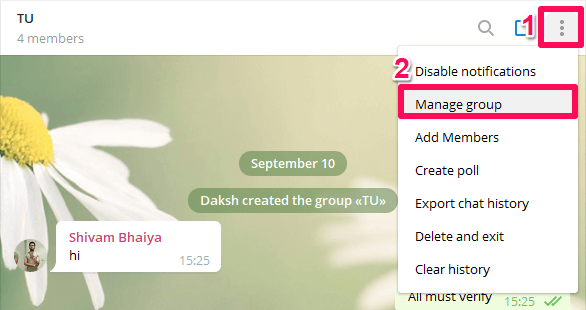 locate messages pinned by you in group