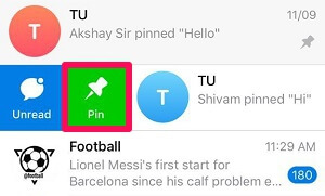 pin Telegram chats on iPhone