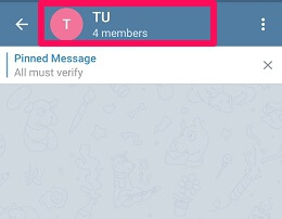 restrict members from pinning message