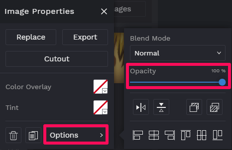 adjust opacity of the image