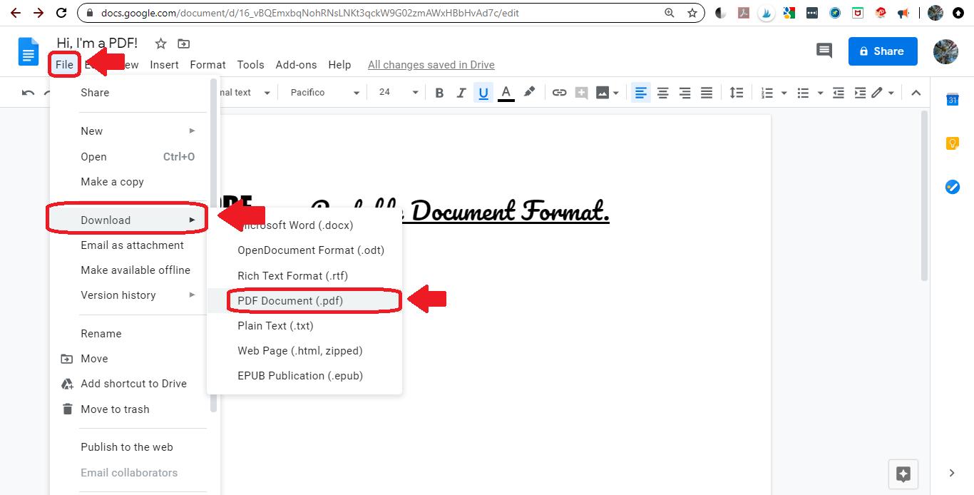 Drive 7 save as pdf