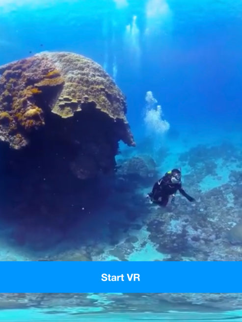 VR Scuba Diving With Google Cardboard