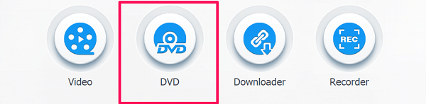 videoproc DVD option