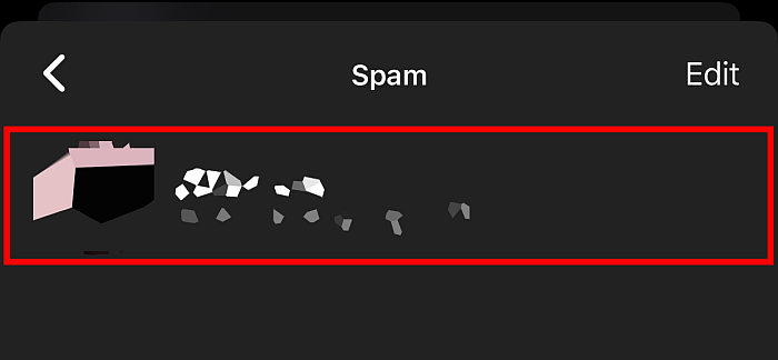 Spam folder contains all ignored messages