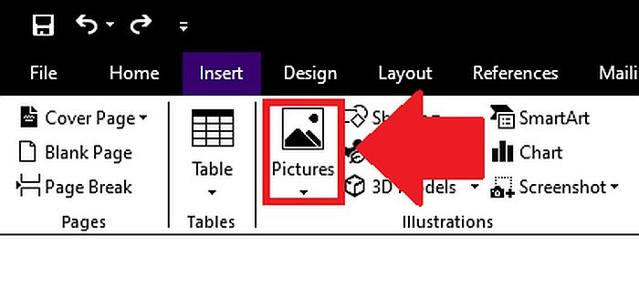 Choosing the Pictures option in the Insert Menu in MS Word