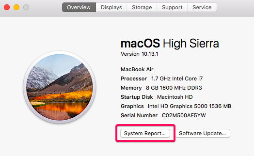 system report on Mac to know more about your RAM