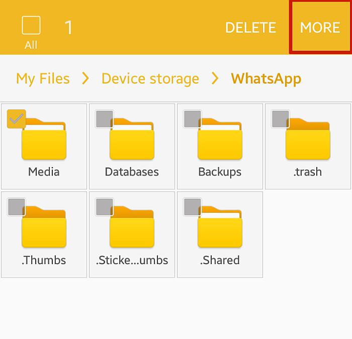 "Selecting ""More"" Option for WhatsApp Folder"