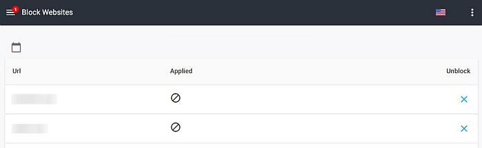 Screenshot of Block Websites window in Mspy