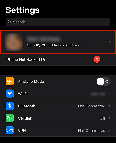 Iphone settings with Profile tab highlighted