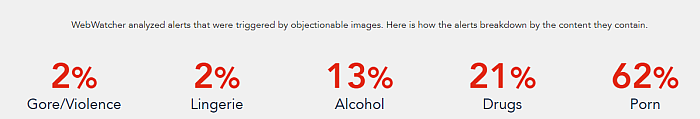 Webwatcher alert for risky photos showing a breakdown of the content the photo contains