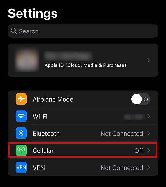iPhone settings with the cellular option highlighted